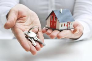 Кто принимает участие в деятельности рынка недвижимости Украины?