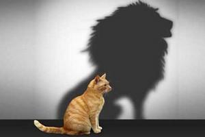 Как стать уверенным в себе человеком