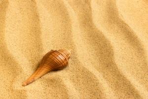 Почему песок разный?
