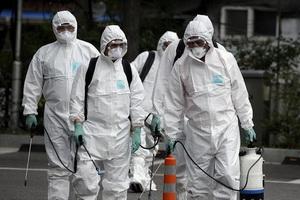 Названы примерные сроки спада интенсивности заражения коронавирусом в России