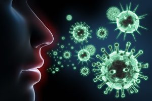 微生物とは何ですか?